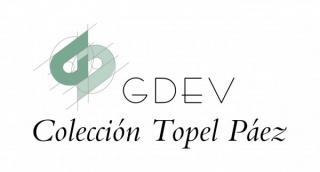 Fundación GDEV