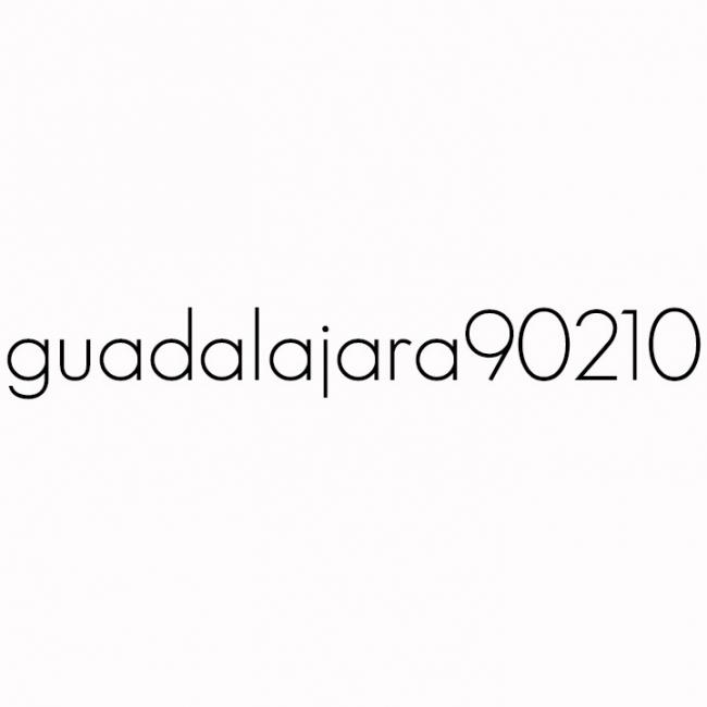 Logo de guadalajara90210