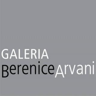 Galería Berenice Arvani