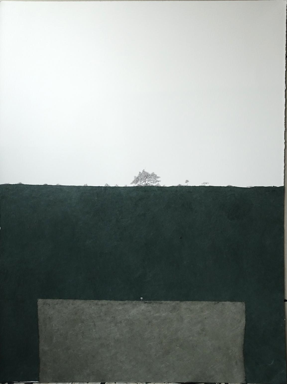 Silla y Árbol. Bosque tras muro gris-verdoso (2020) - María Ángeles Atauri