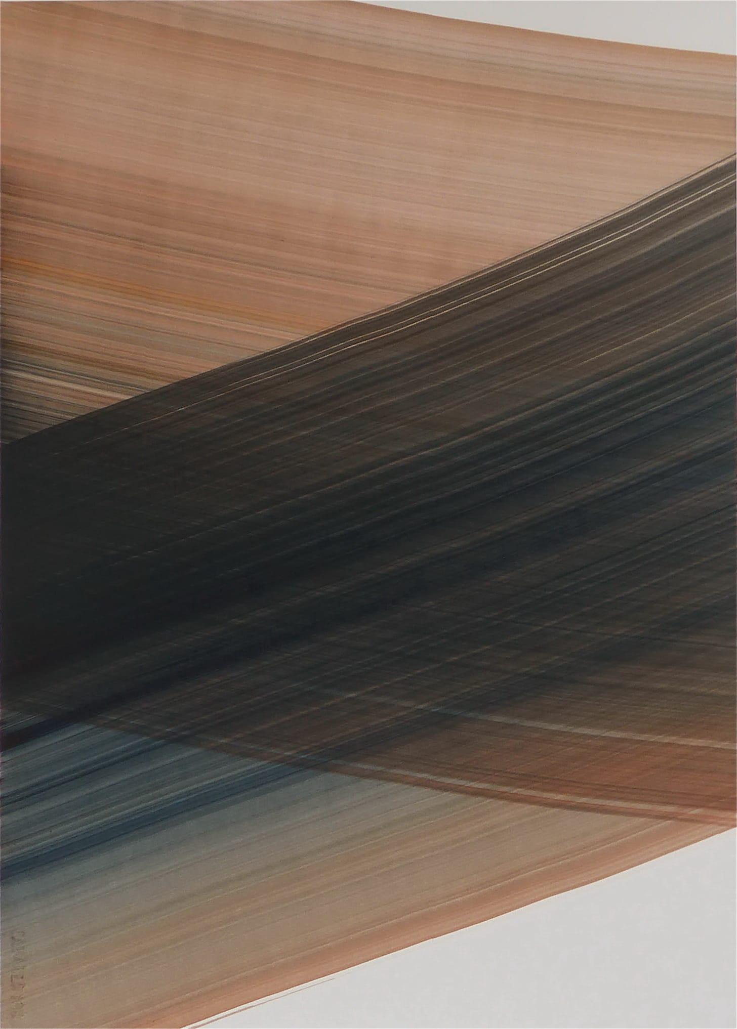 S/T (2018) - Luis Miguel Rico