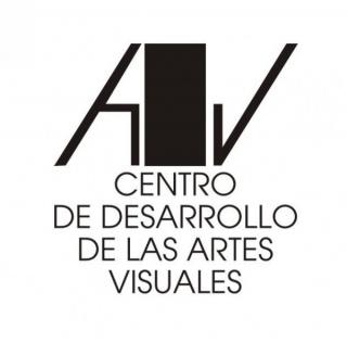 Centro de Desarrollo de las Artes Visuales (CDAV)