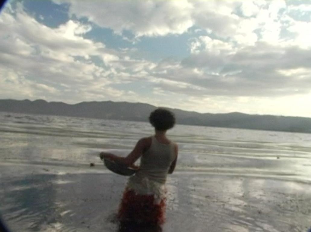 Imágenes Contemplativas I y II (2009) - Alexia Miranda