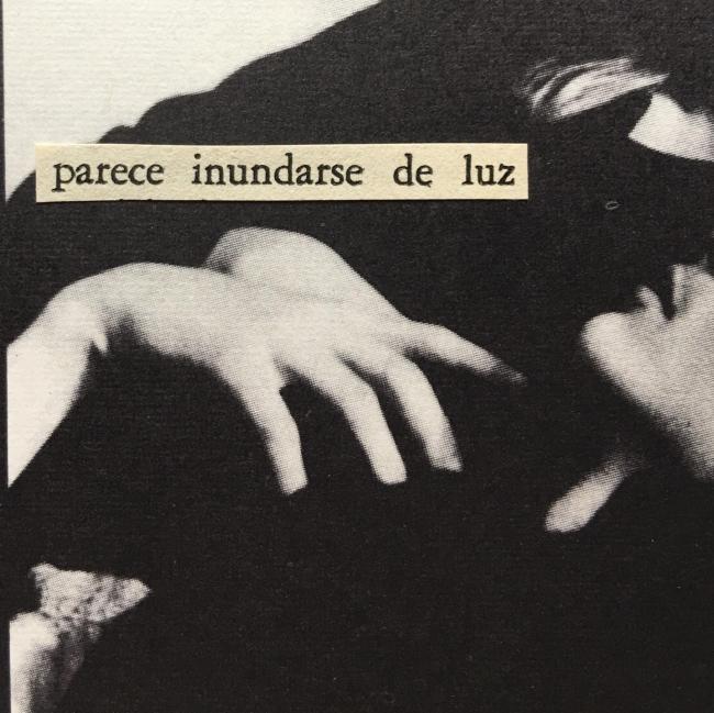 Annita Klimt, Collages