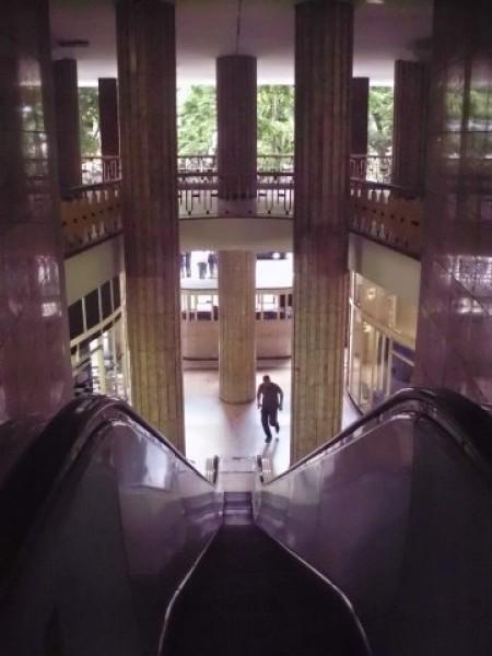 museu do louvre pau-brazyl
