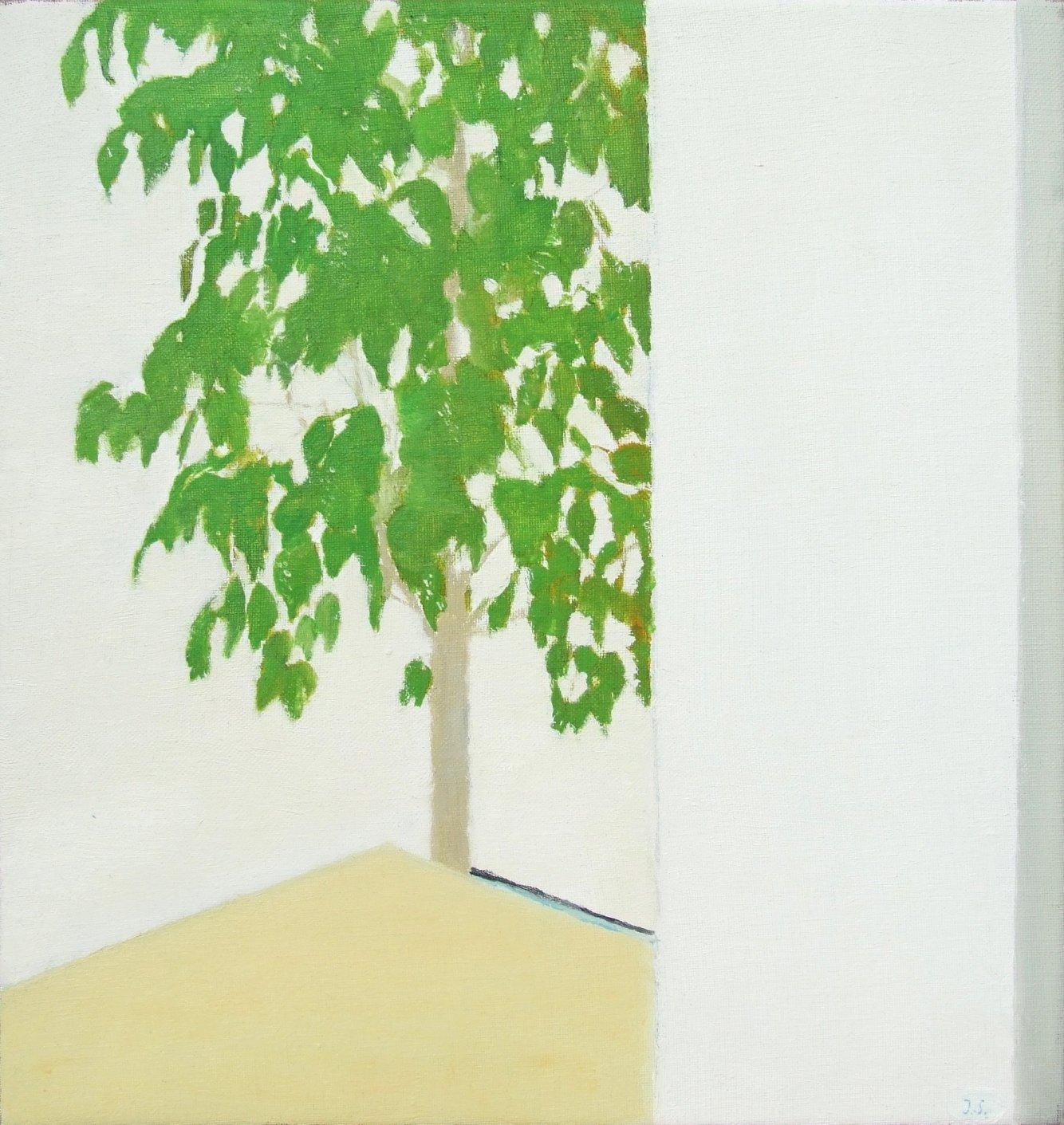 Ficus (2017) - José Angel Sintes