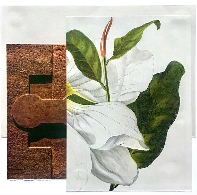 Mineral y vegetal (2020) - Francisco Gestal