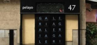 Pelayo47