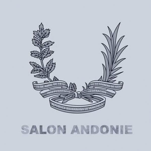 Salón Andonie