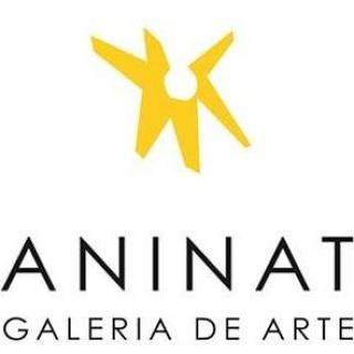 Galería Aninat