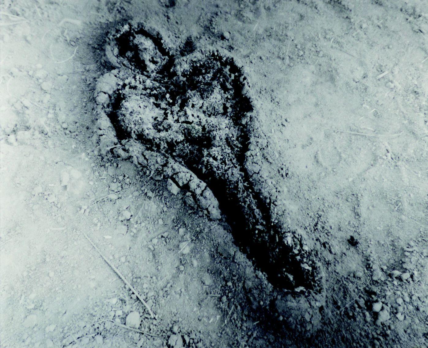 Untitled (de la serie Silueta) (1980) - Ana Mendieta