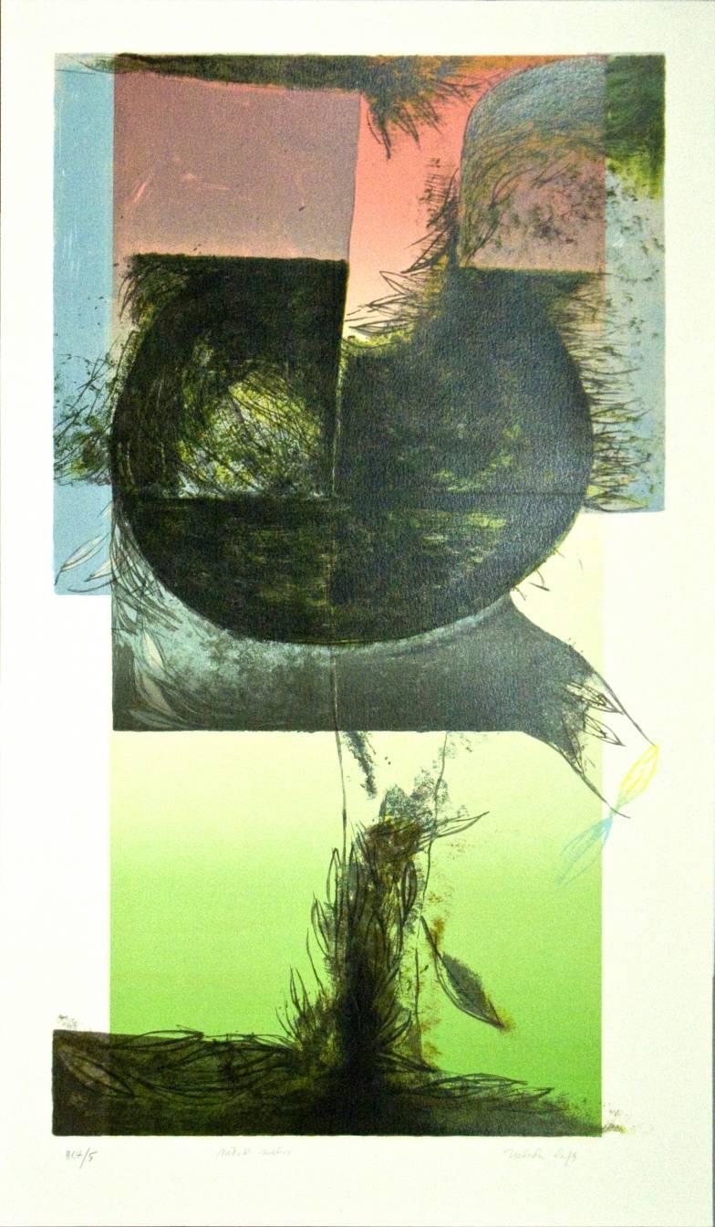 Nido de sueños (2005) - Nélida López Martínez