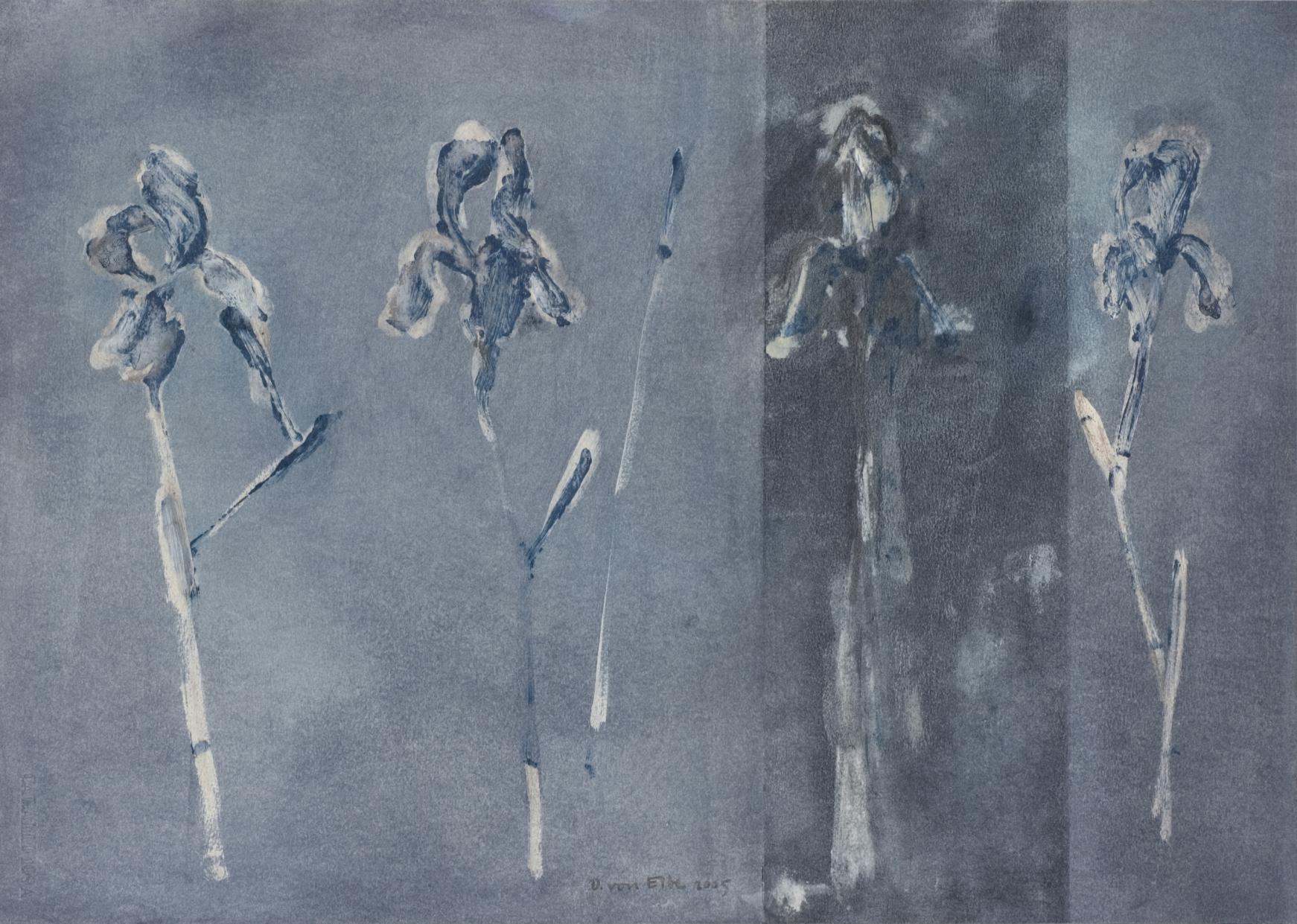 Sin título (2005) - Dorothea von Elbe
