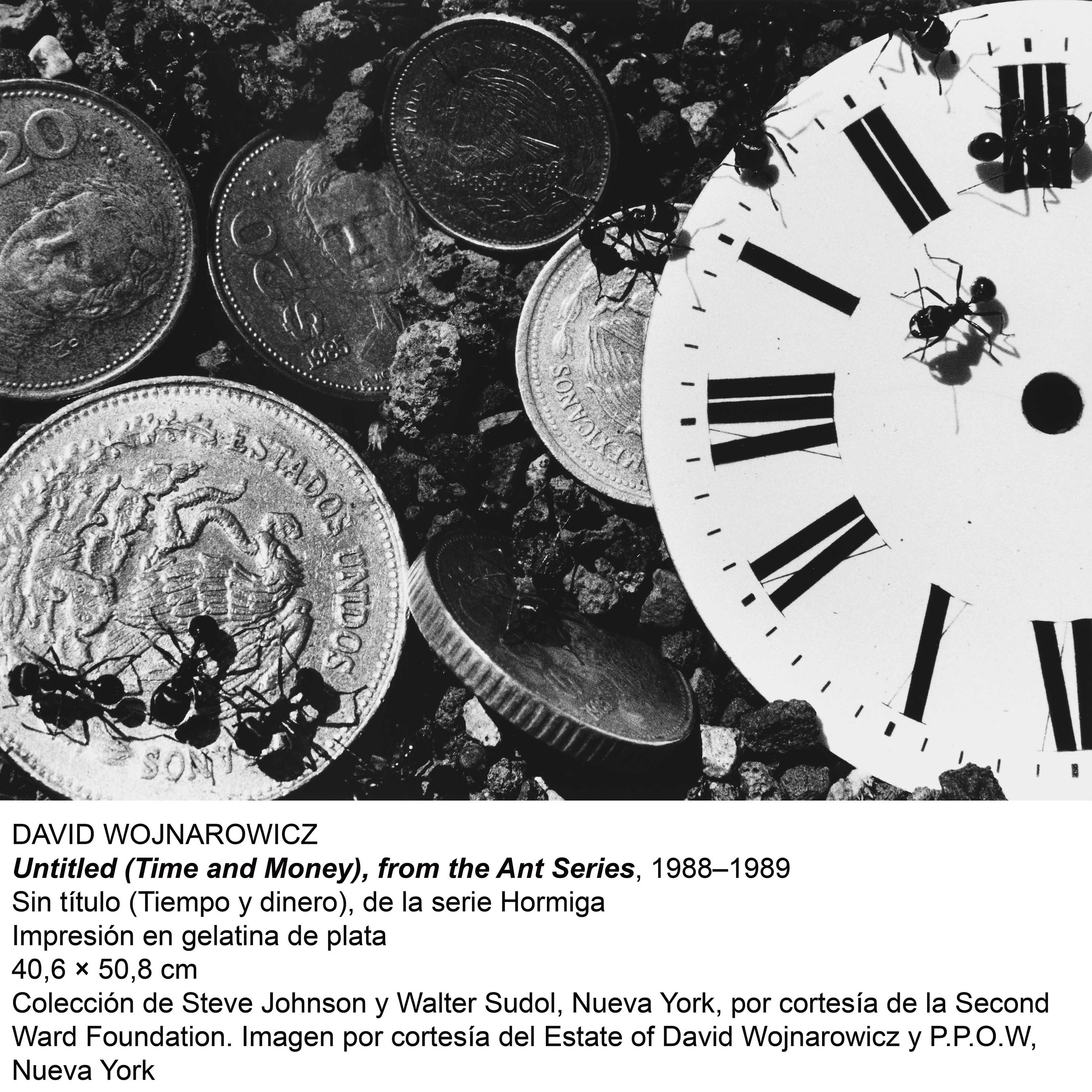 Untitled (Time and Money), front the Ant Series 1988-1989 - Sin título (Tiempo y Dinero), de la Serie Hormiga (1989) - David Wojnarowicz