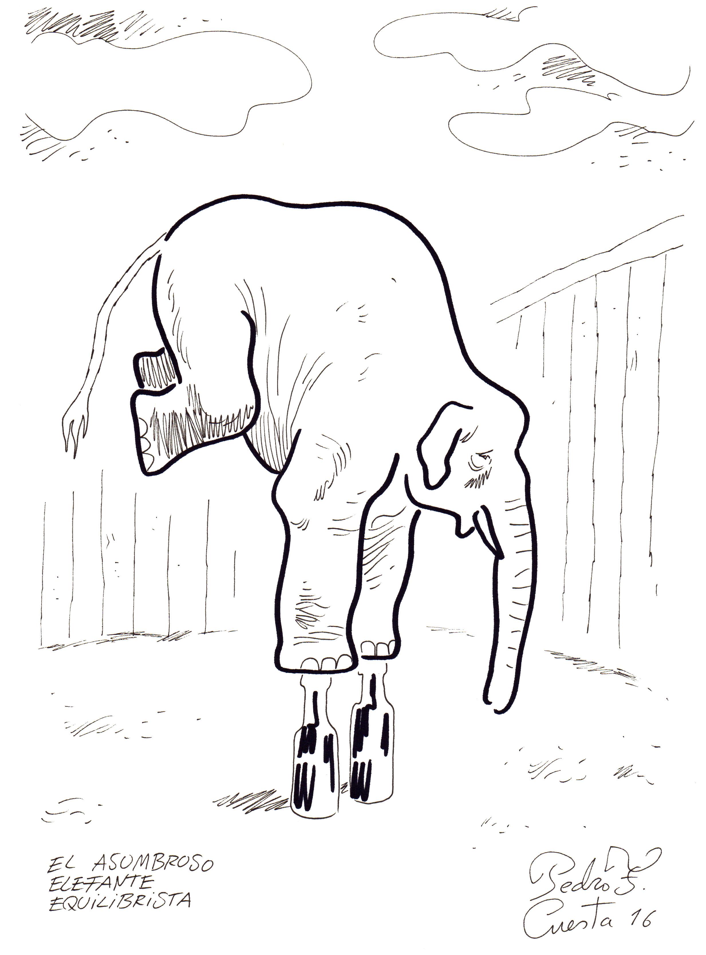El asombroso elefante equilibrista