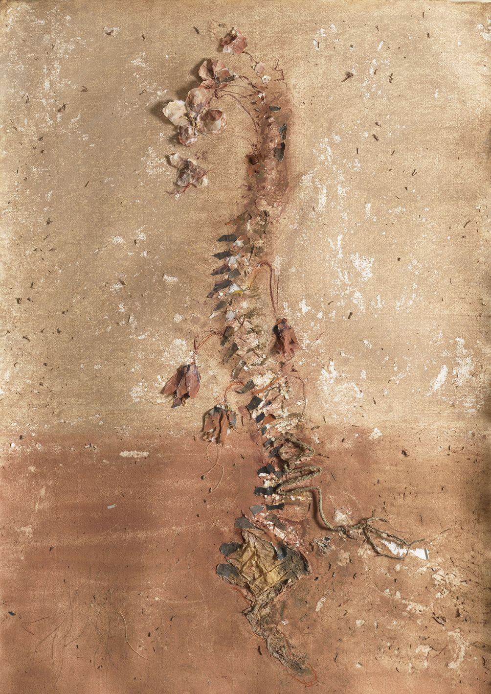 Floración de columna (2010) - Rossana Zaera Clausell