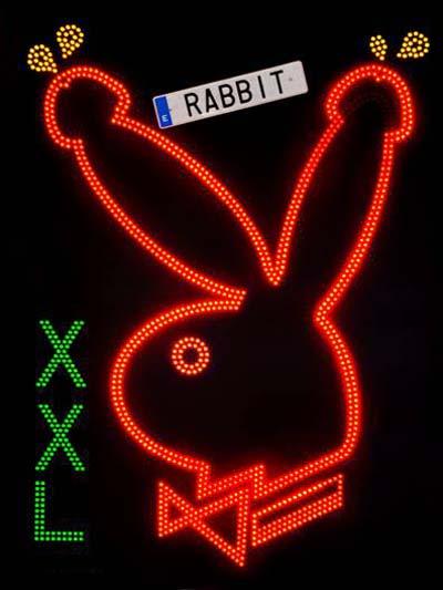 Rabbit XXL