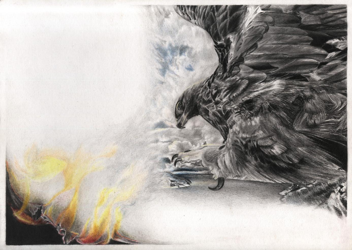 El mundo esta ardiendo como una hoja (2020) - Diego Alejandro Camargo
