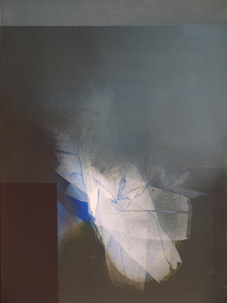 Fariña Nº 4 (2012) - Nacho Mur Zubillaga
