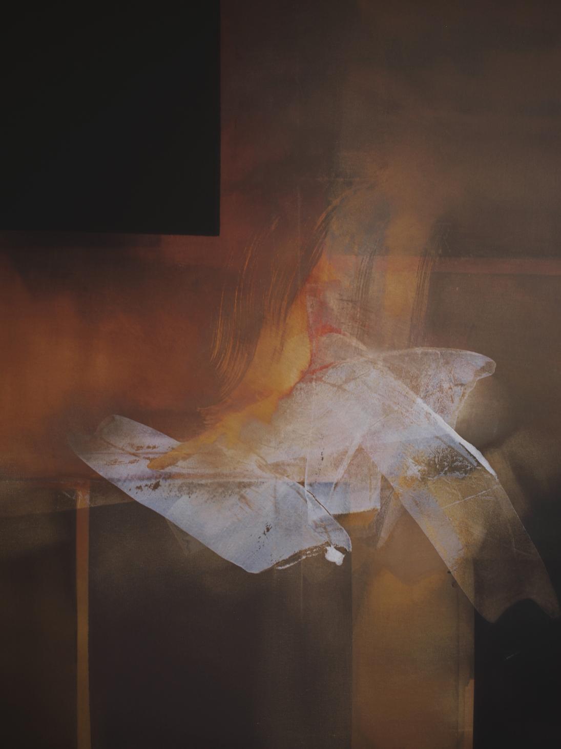 Serie Genesis Nº1 (2012) - Nacho Mur Zubillaga