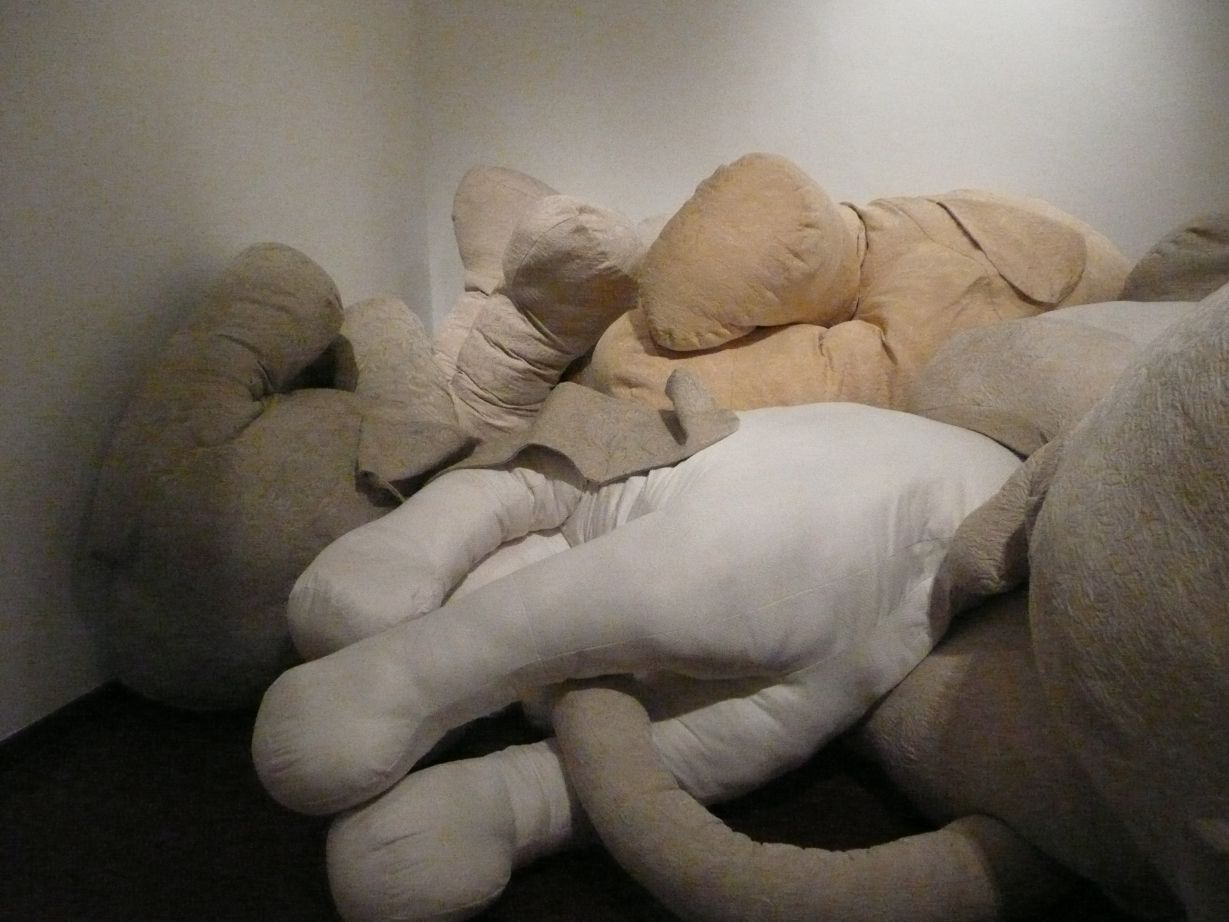 OBJETOS PARCIALES (2007) - Mariela Leal