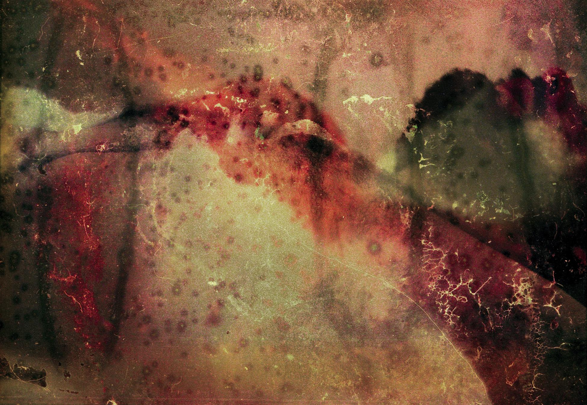 El yo degradado (2018) - Guido Salas Pimentel - Mr. Schwarz