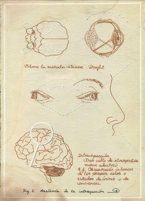 Anatomía de la introspección (2014) - Sara Calivi