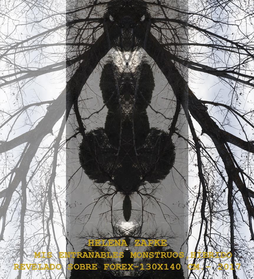 mis entrañables monstruos - híbrido (2017) - Helena Zapke Rodriguez
