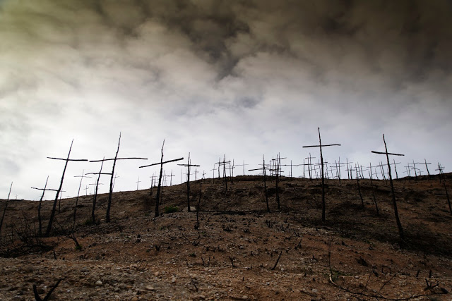 The Forest of the Crosses (2016) - Marc Sellarès