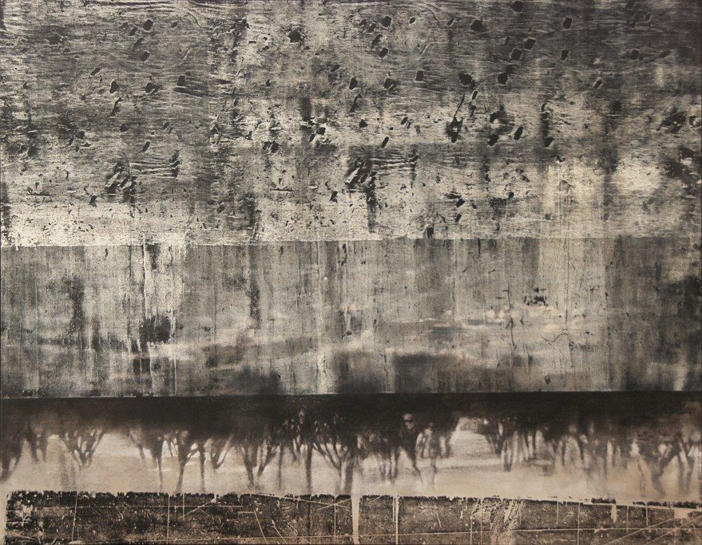 Segmento Nativo (2014) - María Carolina Barros Sanchez