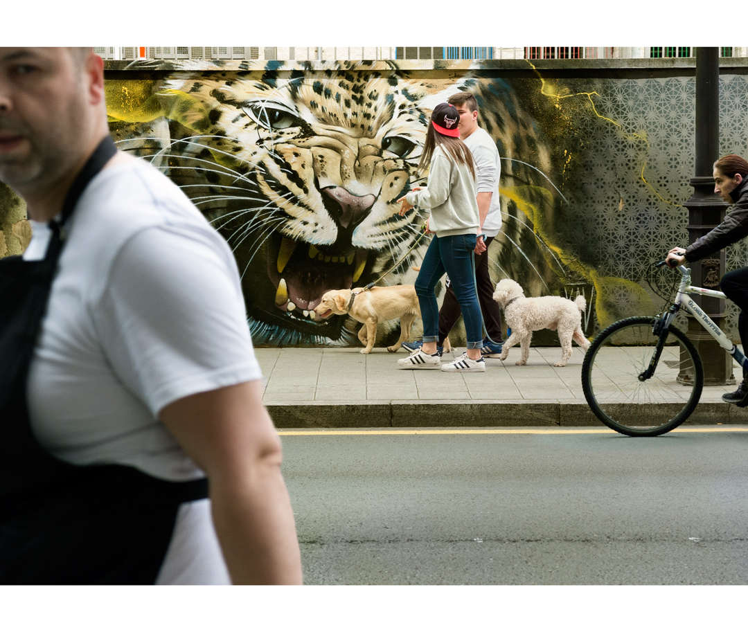 Fotografía en la calle