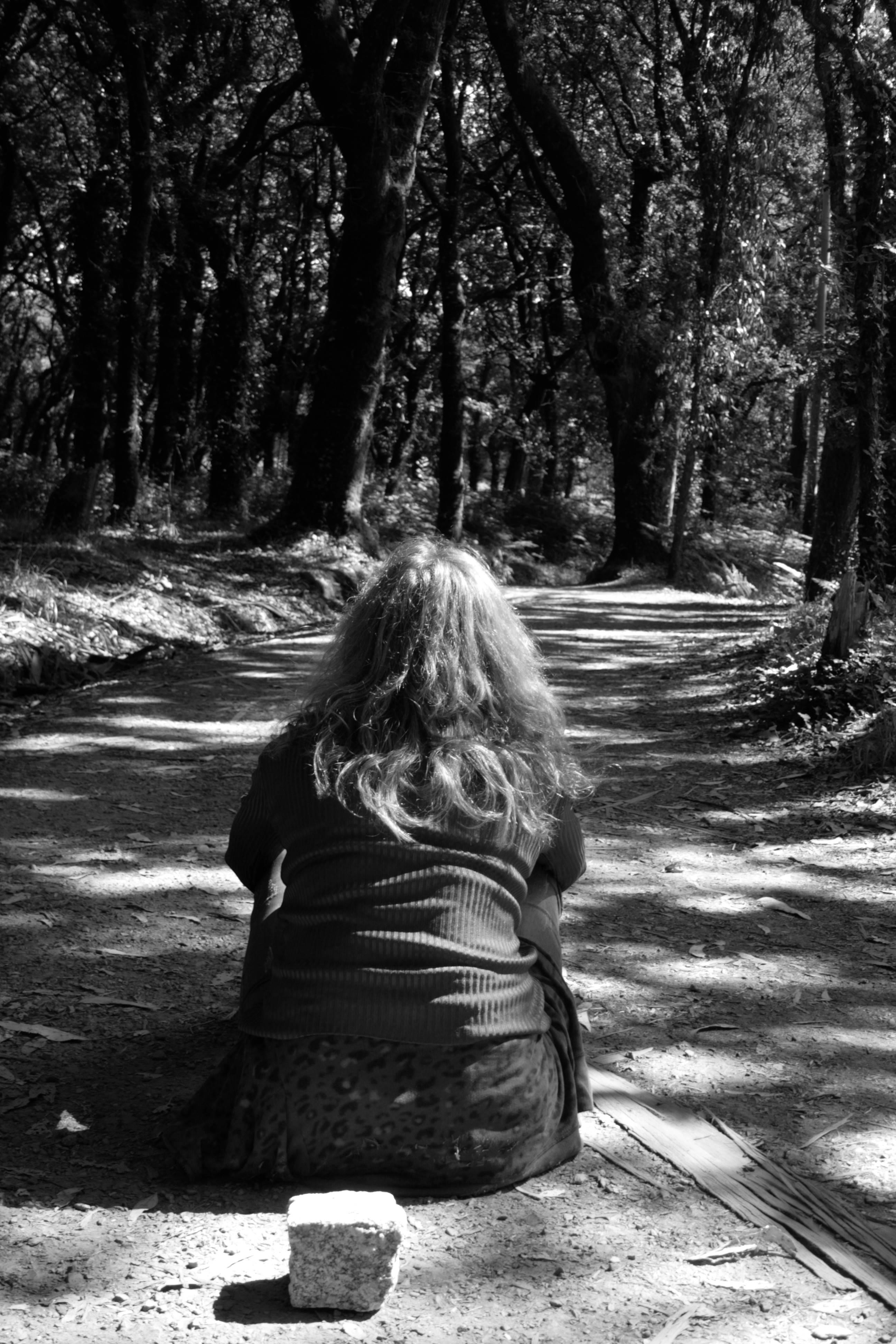 El Camino (2017) - Teresa Díaz Charlín - Teresa Charlín