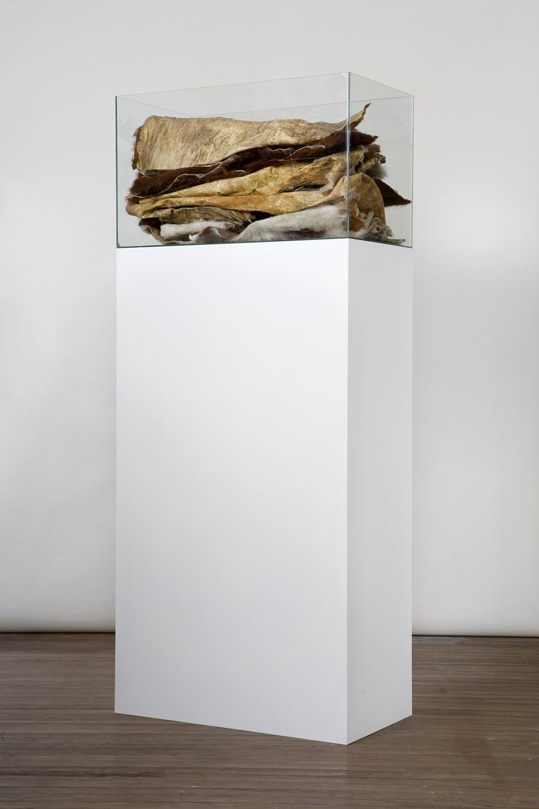 S/T (2008) - Marcela Astorga