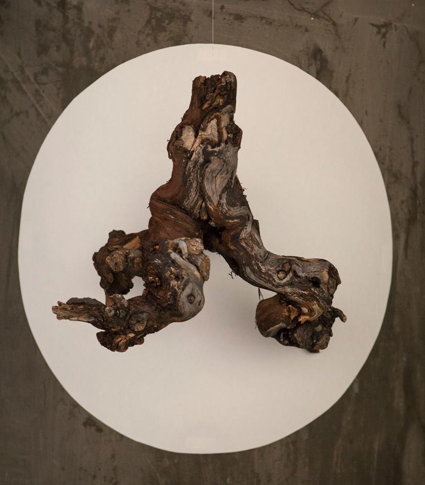 Ars, vitis, vitae (detalle) (2014) - Diego Arribas