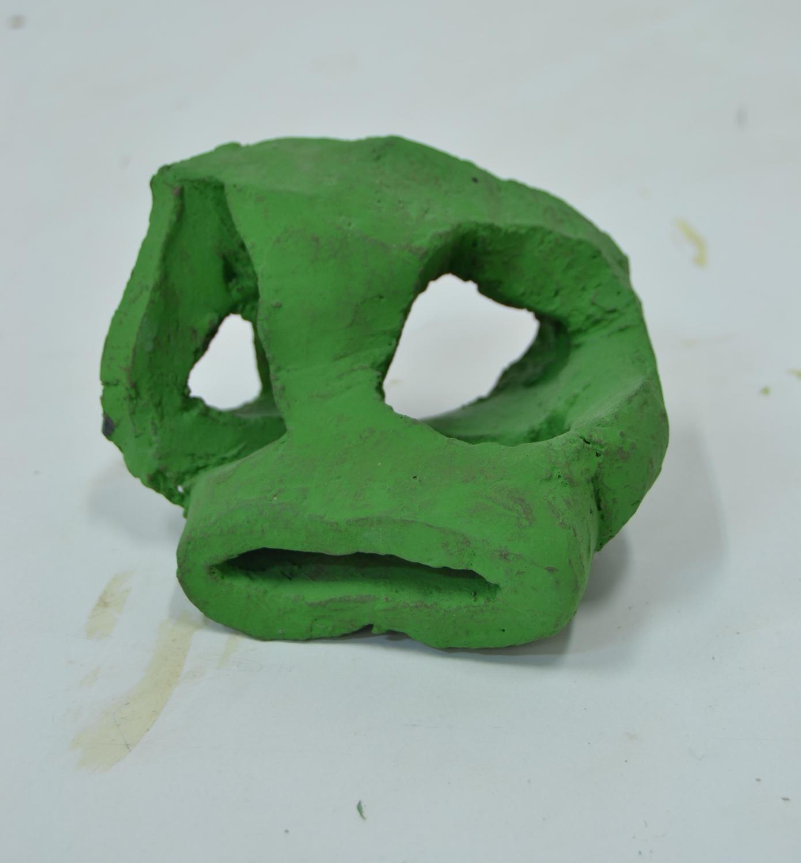 cráneo (C-42)