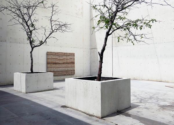 Testigos: un catálogo de fragmentos, MUAC, Ciudad de Mexico, 2015