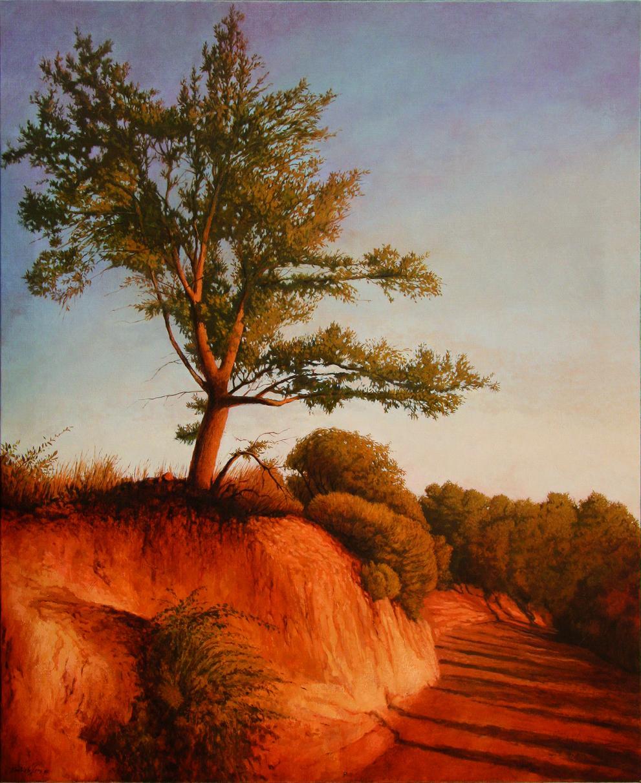 Árbol y camino (2004) - Carlos Castillo Seas
