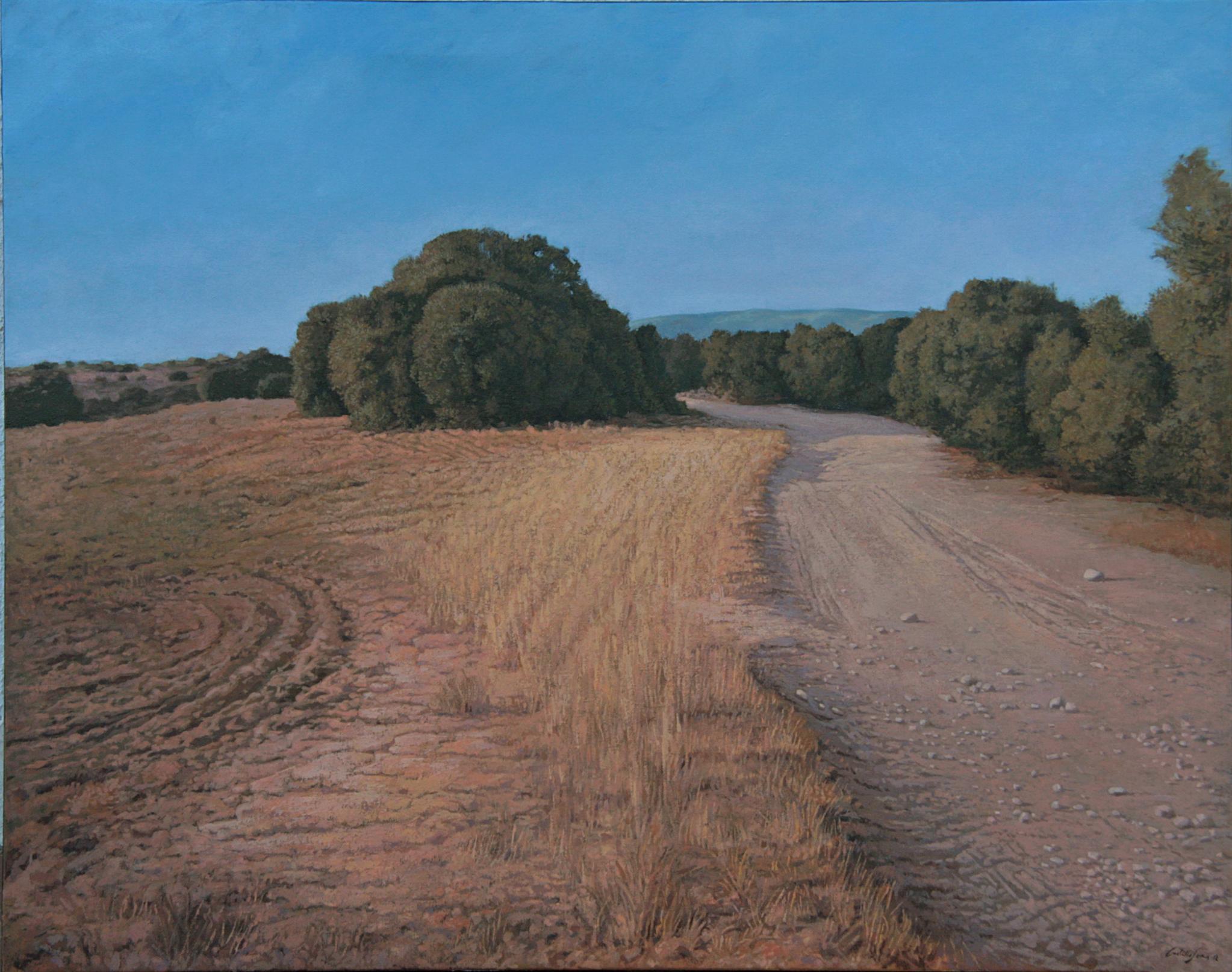 Camino de sombras (2004) - Carlos Castillo Seas