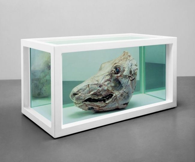 Damien Hirst, Philip (The Twelve Disciples), 1994. Cortesía del SFMoMA