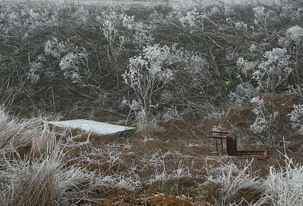 Invernal Room