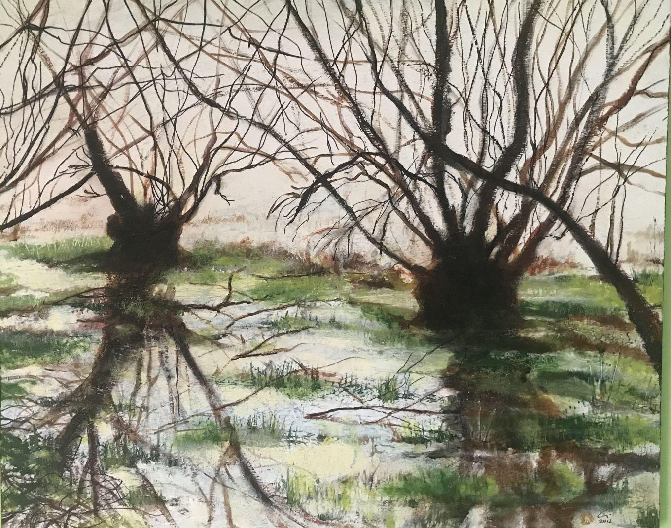Pantanal 1 (2009) - Agustín de Córdoba