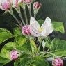 """Detalle de """"Flor del manzano"""" por Idoia Asensio"""