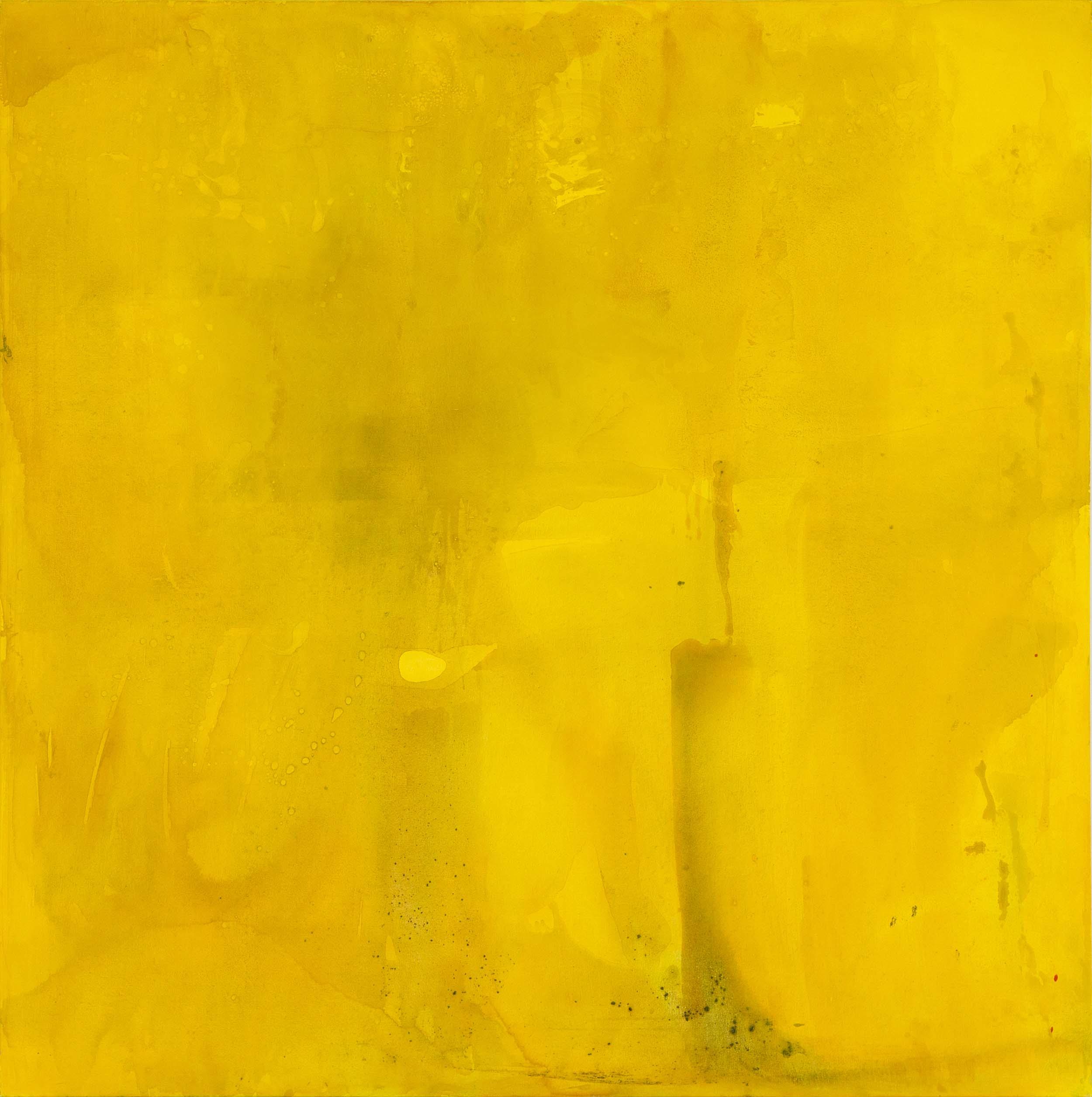 Amarillo Ocre (2014) - Ángela Wilson Searle