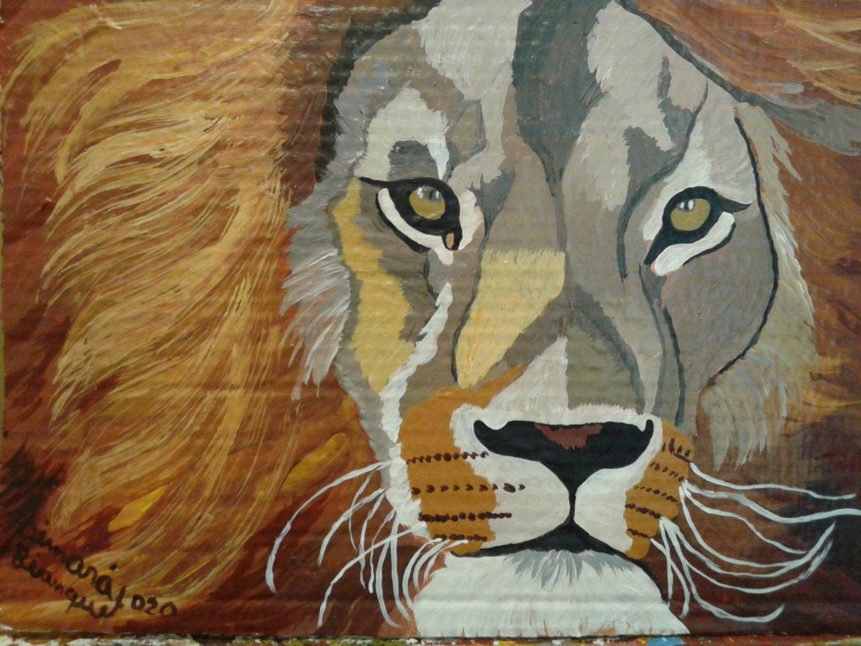 Cara de león (2020) - Aimará Bianquet