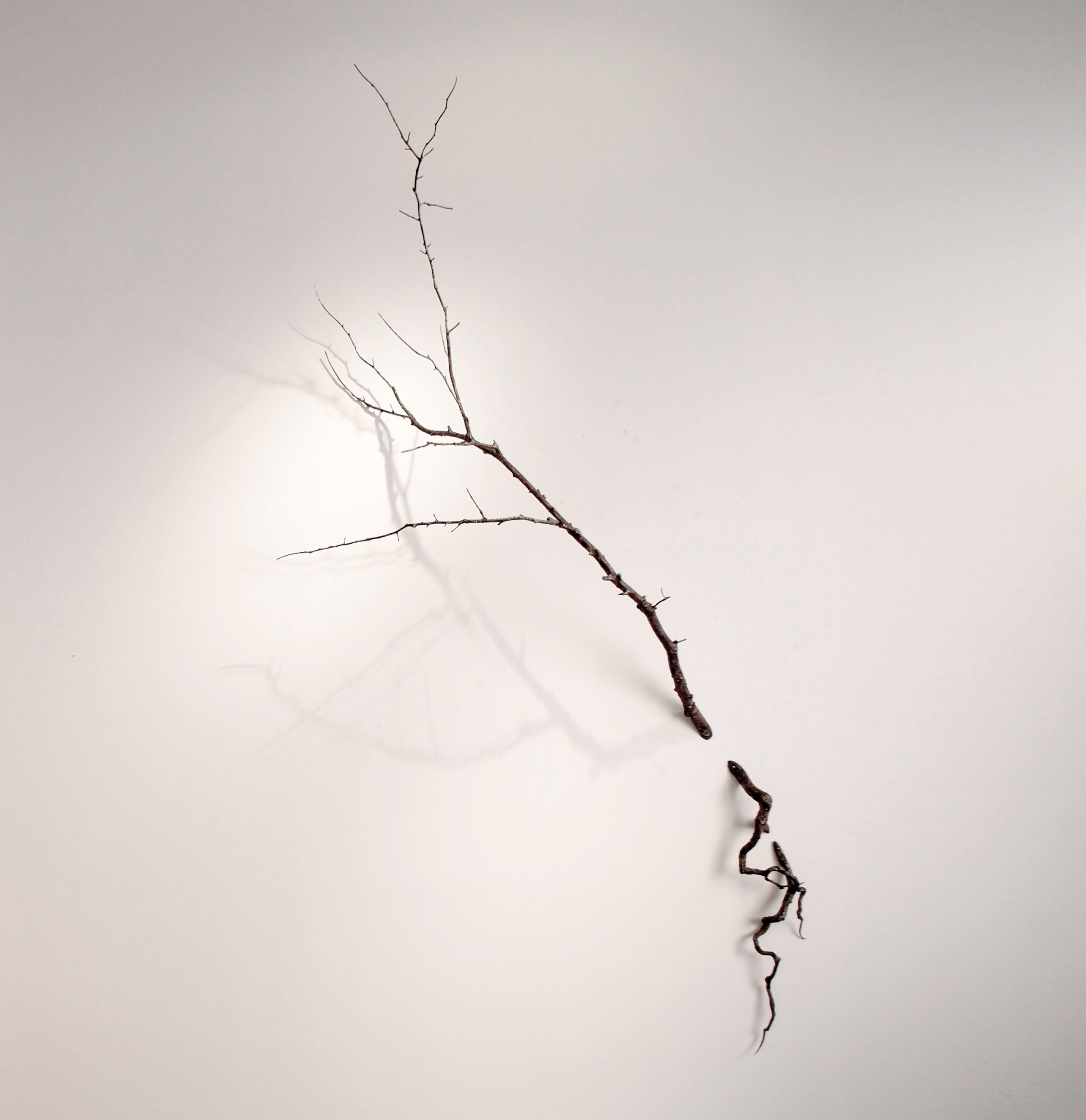 A TRAVES DEL MURO (2016) - Cristina Almodóvar