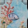 Fondo coraligeno