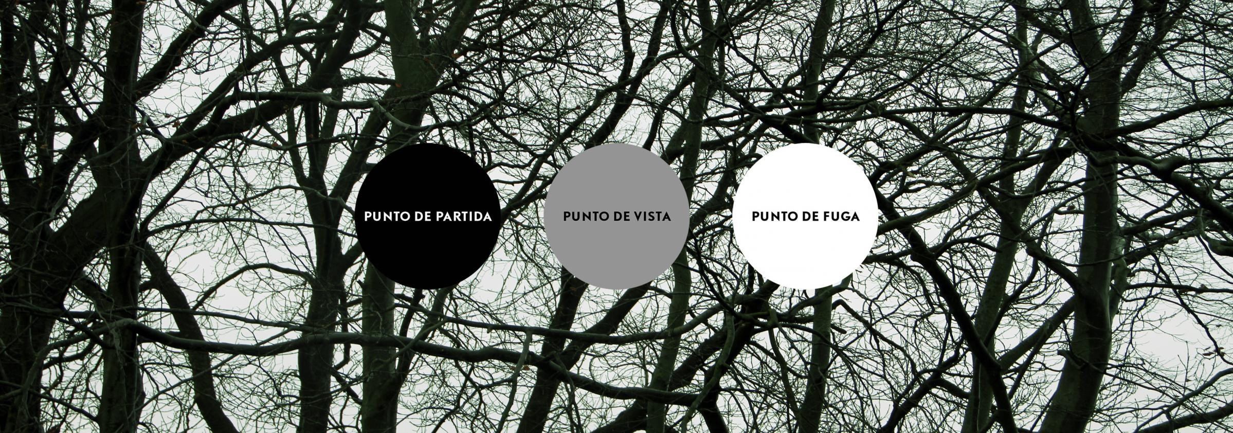 Punto de partida, punto de vista y punto de fuga. (2016) - Alex Mene