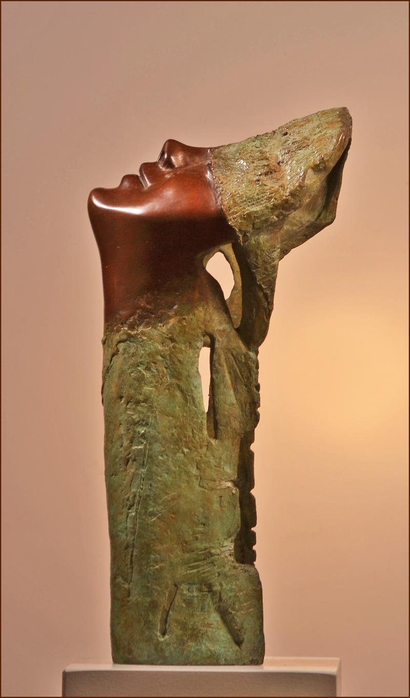 Cabeza cautiva/Captive head (2010) - Viviane Brickmanne