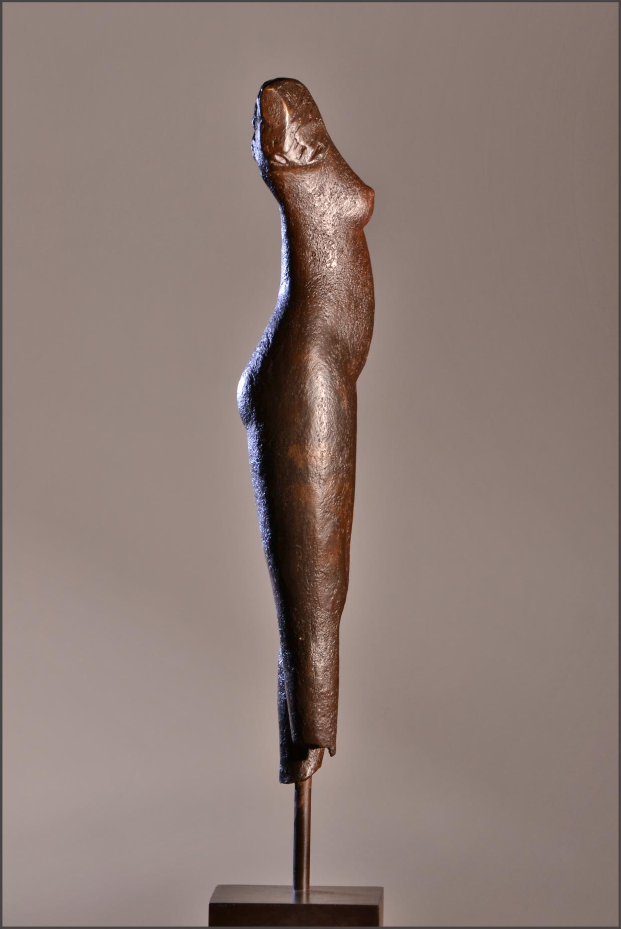 Torso femenino abierto/ Open torso F (2011) - Viviane Brickmanne