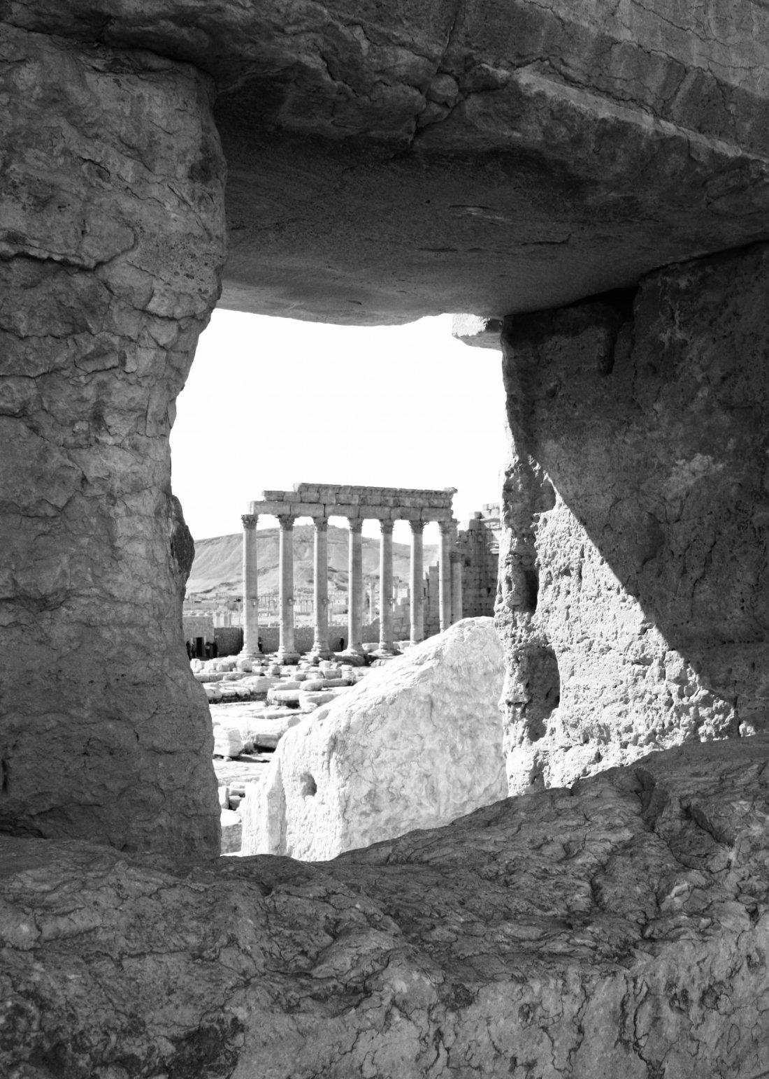 Palmyra XIV (2009) - Pio Cabanillas Alonso